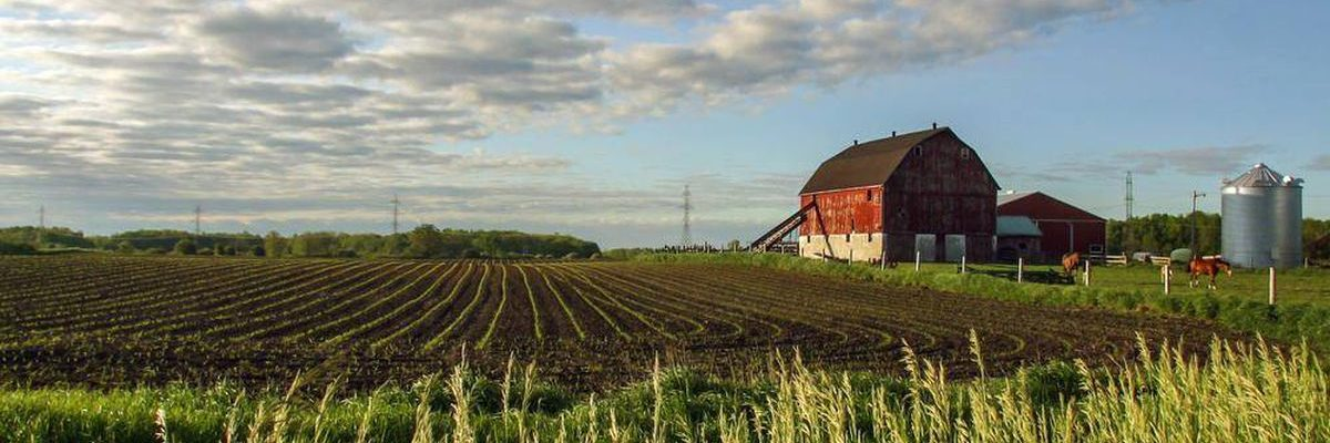 Searching for Farm Land for Sale in United States? Ask These Questions First