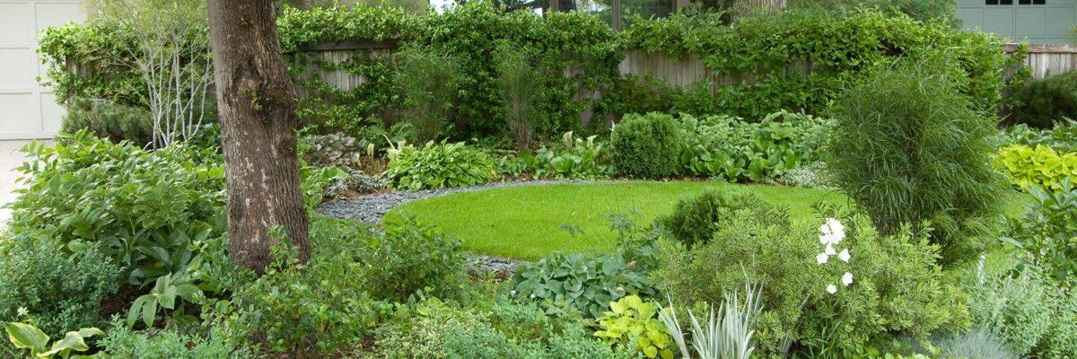 5 Tips for Starting a Shade Garden