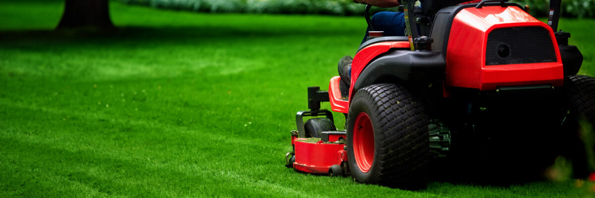 Top 5 Lawn Care Challenges and How to Overcome Them
