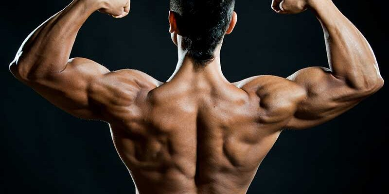 Steroid Prices and Other Factors to Consider When Buying Them