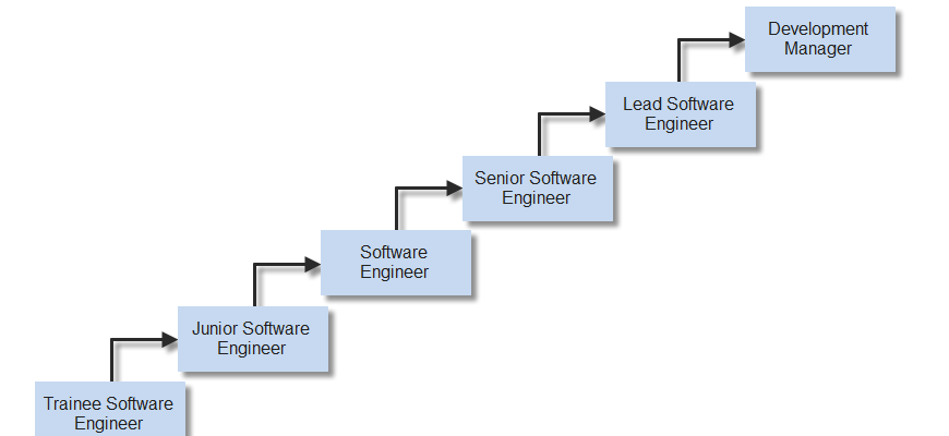 Career paths in software development